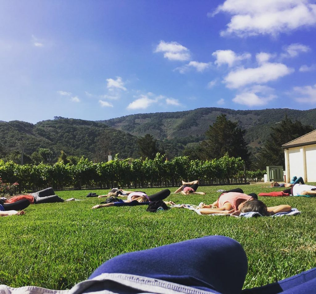 Yoga at the vineyard this morning